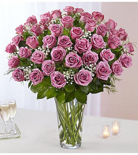 Lavender Roses Four Dozen