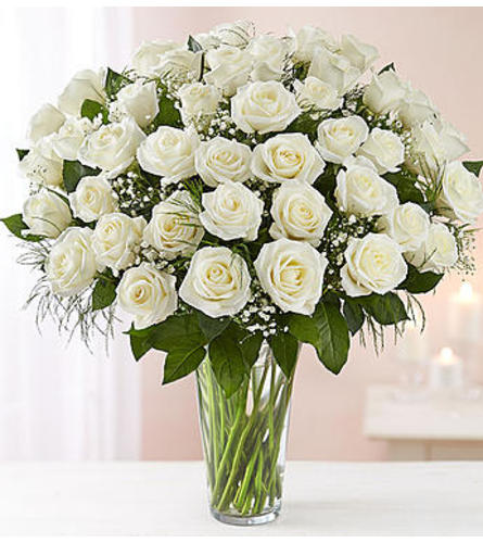 White Roses Four Dozen