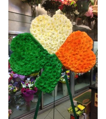 Shamrock  in Irish Flag colours