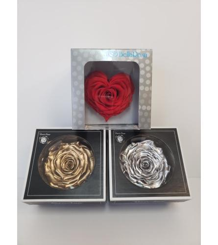 Preserved  Single Roses