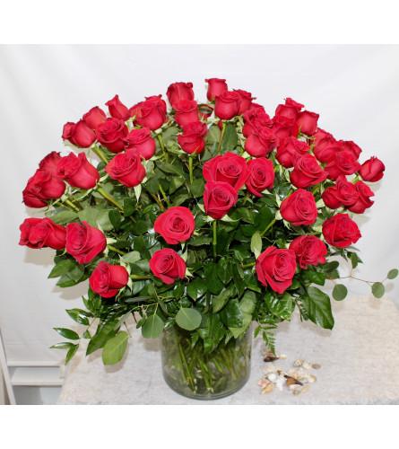 60 Long Stem Premium Roses