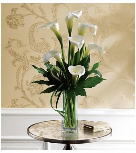 Fantastic Calla Lilies