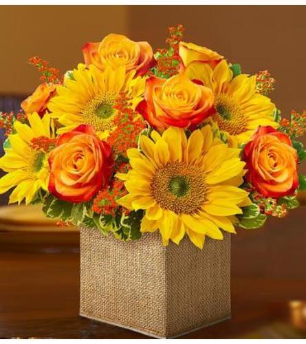Sunflower Burlap