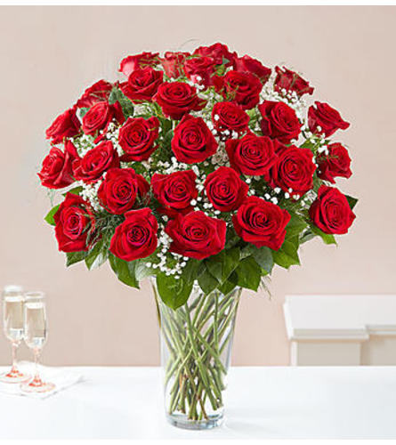 Red Roses Three Dozen