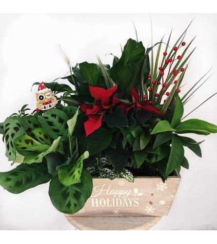Happy Holidays Planter garden