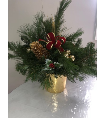 FRESH PINE GARLAND IN GOLD POT