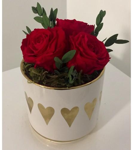 Preserved Rose Arrangement Red