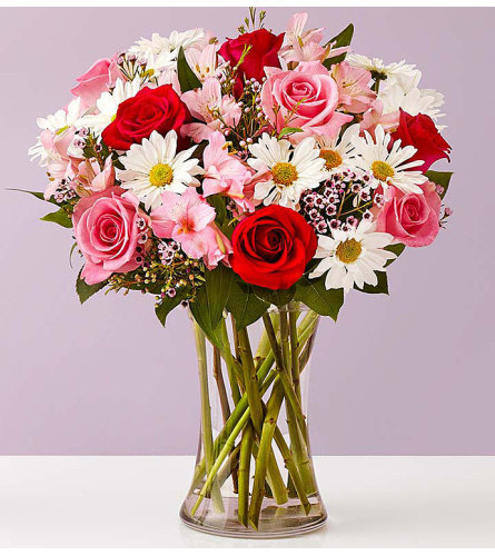 Sweet Valentine My Valentine