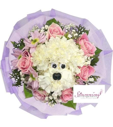 Pink Stunning Pup