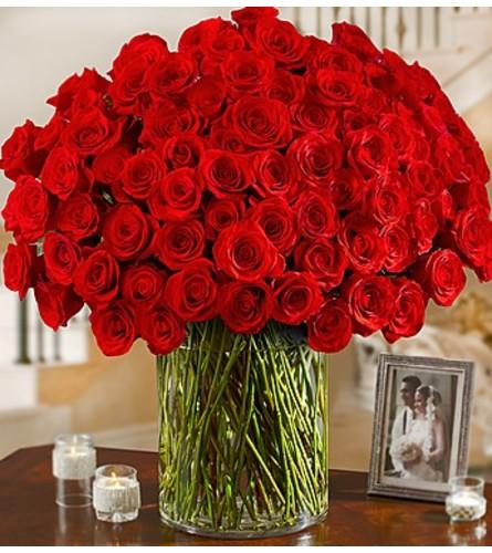 100 Red Roses in vase