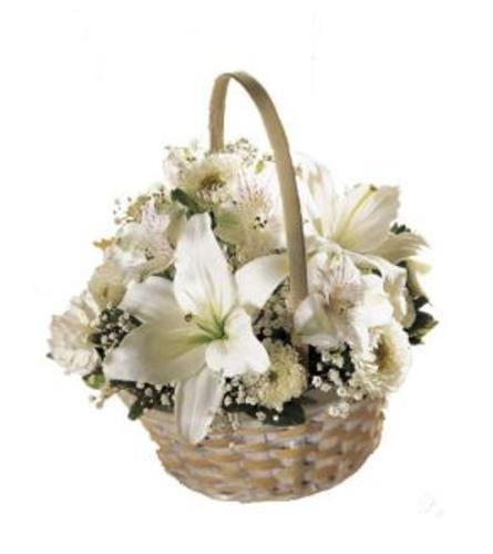 white basket of warmth