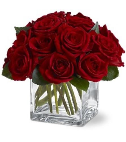 Teleflora Dozen Rose Contempo