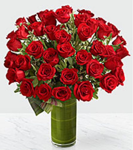 Fate Luxury Rose Bouquet - 48 Roses