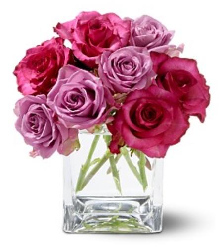 Teleflora Wild Plum Roses