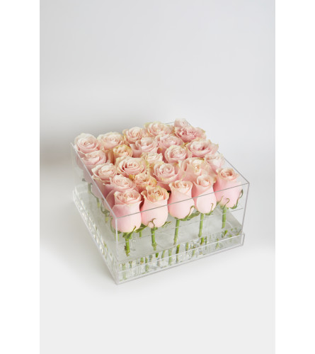 Acrylic Box square  25 Roses