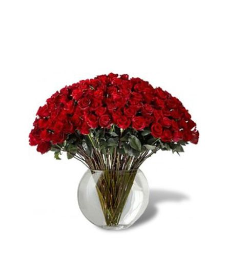 100 Red Roses 2020