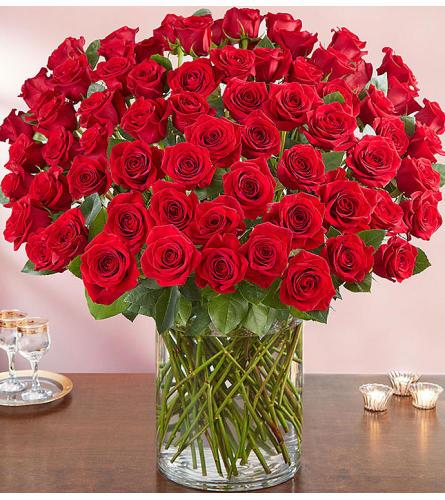 100 Premium Long Stem Red Roses