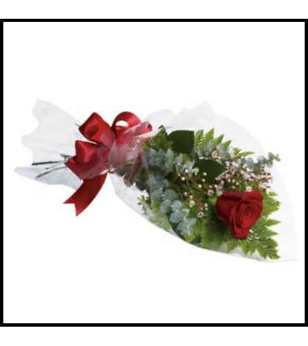 ONE SINGLE RED ROSE WRAPPED FANCY TO PRESENT
