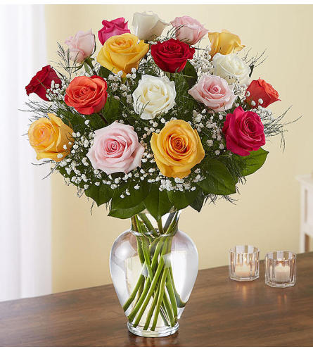 Beautiful Long Stem Assorted Roses