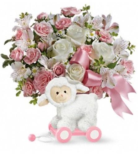 Sweet Little Lamb - Pink