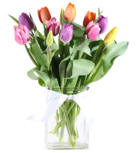 Sweetest Tulips
