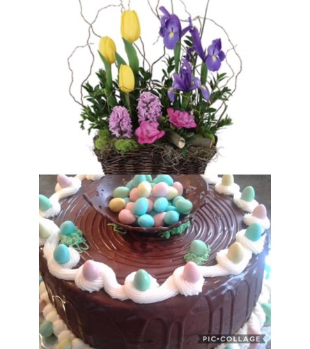 Easter cake and planter combo
