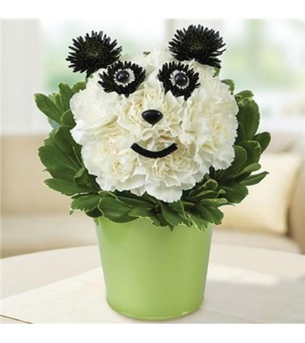 Get Well Panda