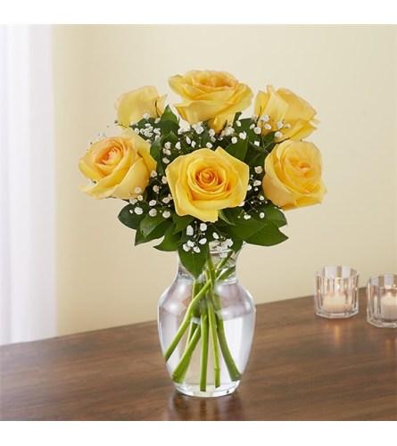 6 Yellow Roses w/vase