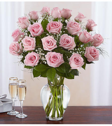 Classic Two Dozen Pink Rose's