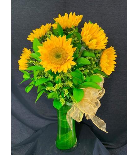 Radiant Golden Sunflowers