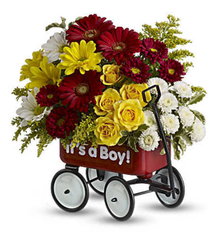 It's A Boy Welcome Wagon 1
