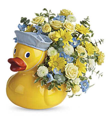 It's A Boy Duck