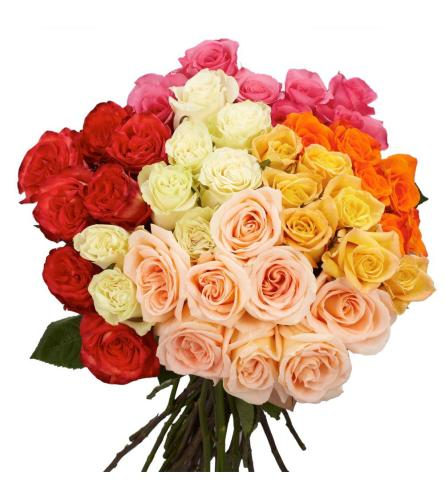 100 Premium Long Assorted Roses