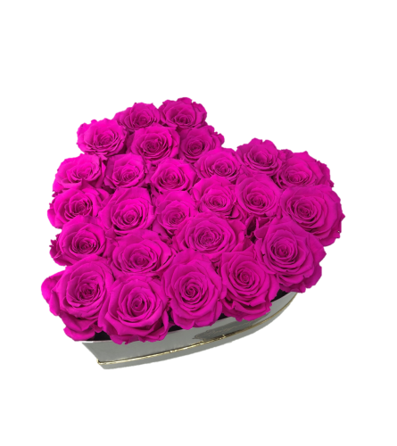 Hot Pink Forever Roses
