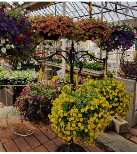 Smith Hanging Baskets