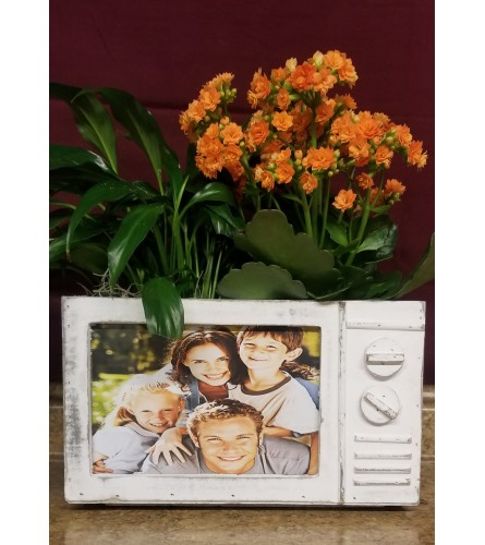 Picture Frame Planter