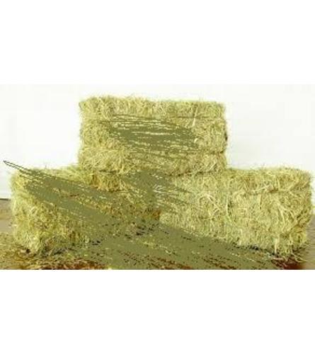 hay square bales