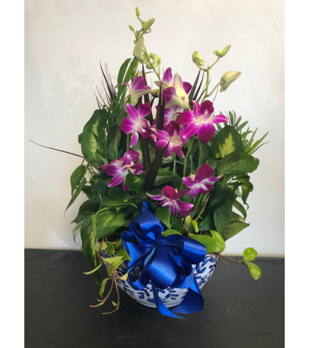 French Country Planter with Orchids
