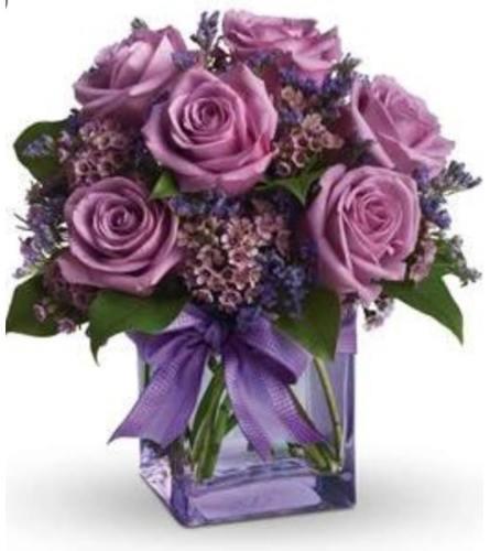 Lavender Mornings