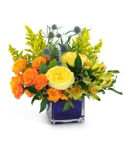 Bloom with Brilliance by Country Gardens
