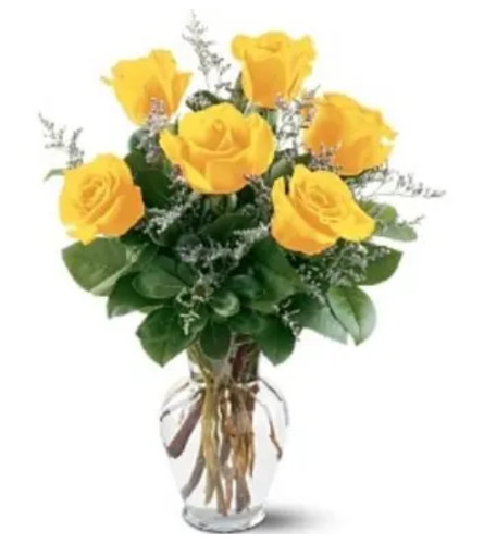1/2 DOZEN YELLOW ROSES IN VASE WITH GREENS AND FILLER