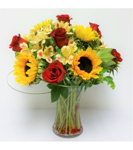Sunny Rose Delight