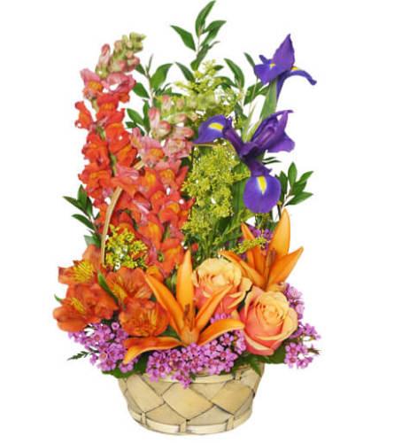 Multi-Color Memories Flower Arrangement - FSN