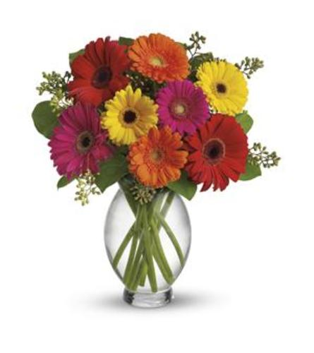 The Gerbera Brights Bouquet by Teleflora