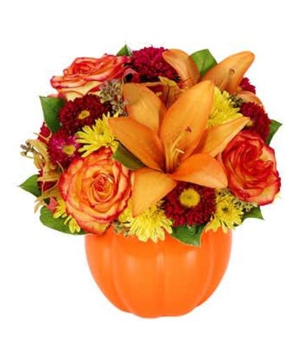 A Fall Harvest Pumpkin