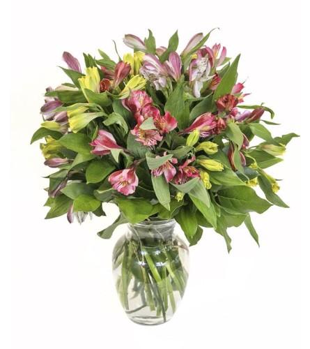 Amy's Alstromeria Vase