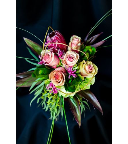 Protea in Pink