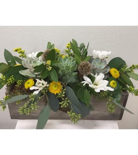 Long Succulents and Blooms Box