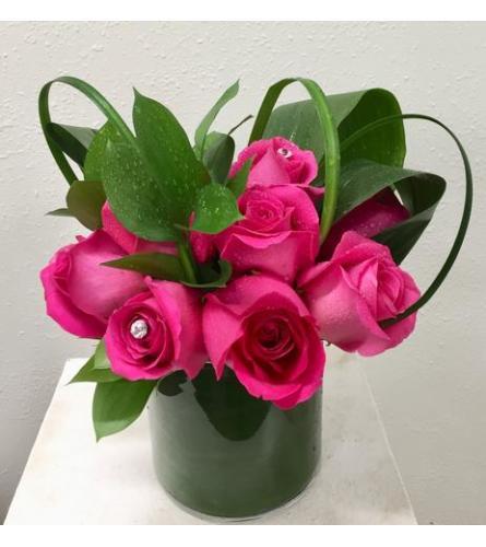 Modern One Dozen Roses