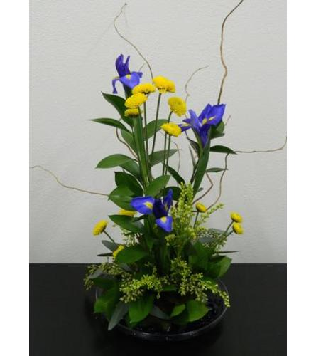 Iris and Willow Ikebana